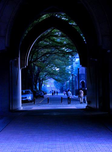 blueroad.jpg
